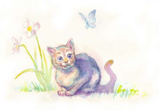 Cat_and_butterfly_2